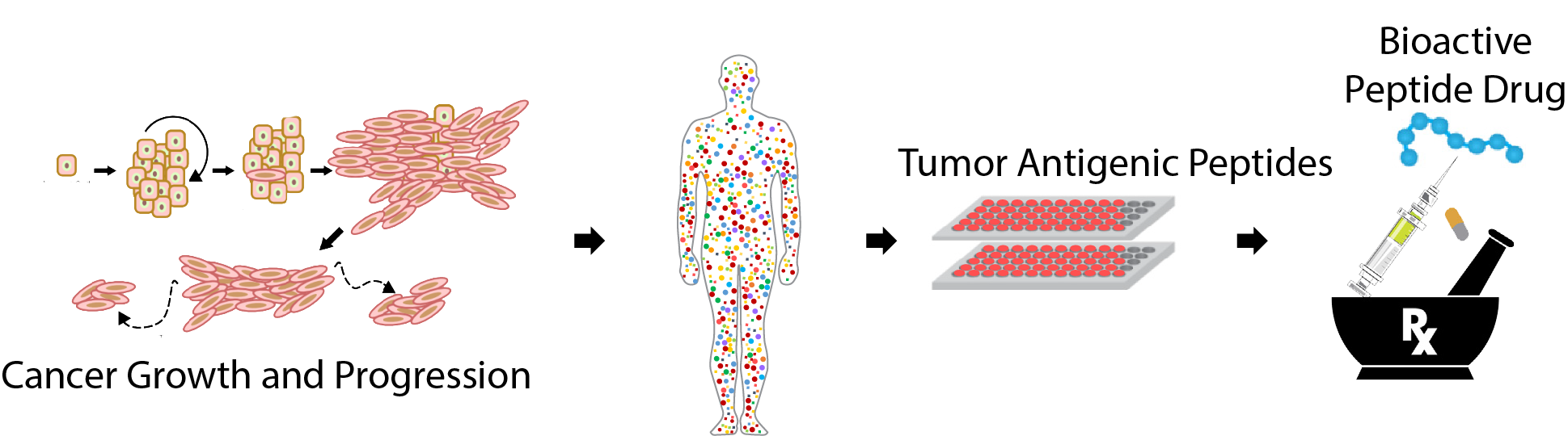 Tumor antigenic peptide