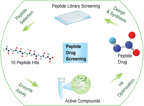 peptide library drug screening