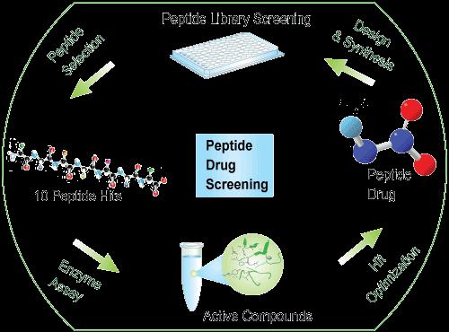 多肽文库药物筛选