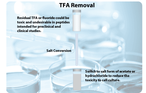TFA removal peptide synthesis service