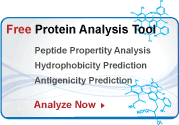 Protein peptide analysis tool for peptide hydrophilicity